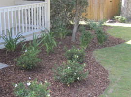 Landscape maintenance lawn mowing trimming plants sod mulch DeLand Sanford Palm coast