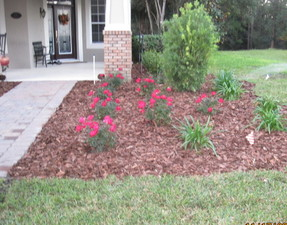 Sod plants mulch trees palms irrigation DeLand Sanford Palm coast