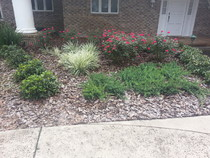 Lawn landscape mowing cutting plants palm sod mulch Sanford DeLand