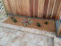 Landscape lawn design installation sod services deland sanford palm coast